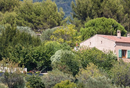 Beautiful French Farmhouse in Provence - Aups, France
