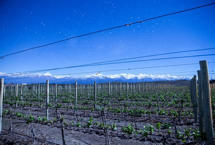 Auberge du Vin - Mendoza - The Heart of the Wine Country