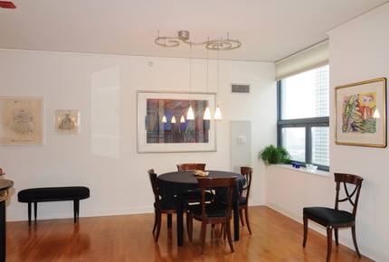 Downtown Chicago, Lake Shore East condo - Chicago, Illinois