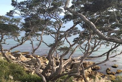 Rawhiti House - Langs Beach, New Zealand