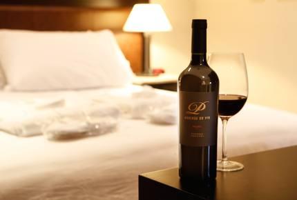 Auberge du Vin - Mendoza, Argentina