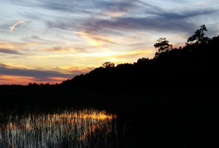 Beautiful Grace Point, Cape Romain, SC