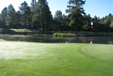 SKI OR GOLF IN THE MAGICAL FOREST
