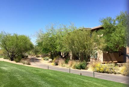 Troon North 9th Hole Green - Scottsdale, Arizona