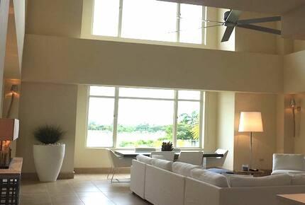 Luxurious Sub-Penthouse