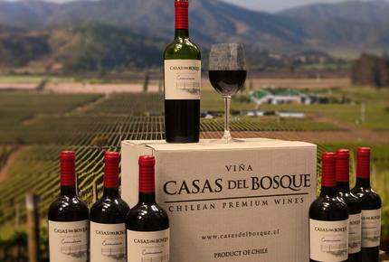 CURATED WINE ROUTES - Scenic Vineyards & Valleys, Chile