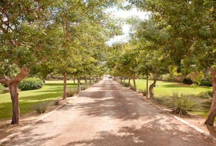 Bougainvillea Estate