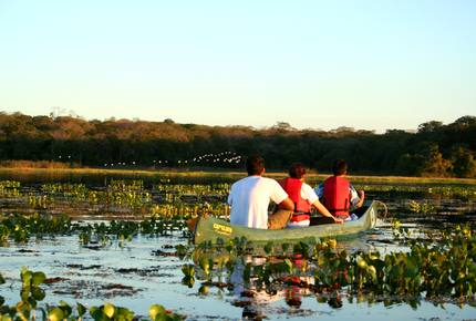 CURATED ECO EXPLORINGS - Pantanal South Ecological Refuge, Brazil