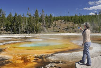 CURATED AMERICA THE BEAUTIFUL - Hidden Yellowstone Nature Safari, Wyoming