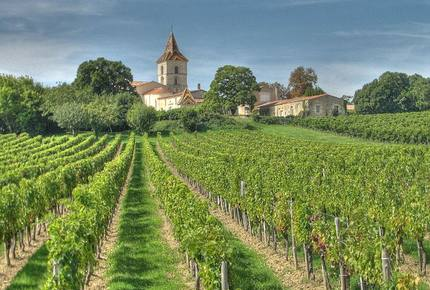 CURATED WINE ROUTES - Sipping the Bordeaux & Dordogne, France