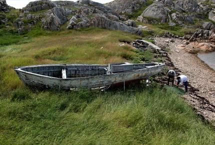 CURATED ECO EXPLORINGS - Fogo Island Berry Wild Time, Canada