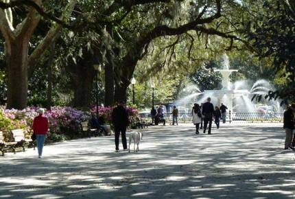 CURATED SOUTHERN SOJOURNS - A Coastal South Adventure, Charleston to Savannah