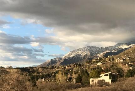 Modern Mountain View