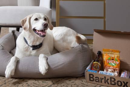 Concierge POSH PET LIFESTYLES - Pet Friendly Escapes, USA