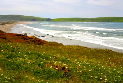Dillon Beach Dream