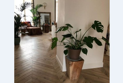 Elegant Apartment at St Germain des Pres
