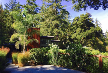 Silicon Valley Woodside Retreat in the Redwoods