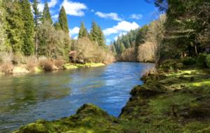 Vida, Oregon