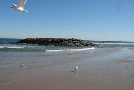 Jersey Shore Getaway