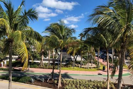 South Beach Oceanfront Luxe