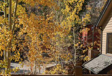 Home exchange in Frisco CO, deck overlooking fall foliage