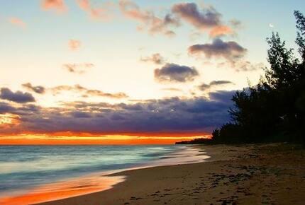 La Bougainvillea - North Palmetto Point, Bahamas