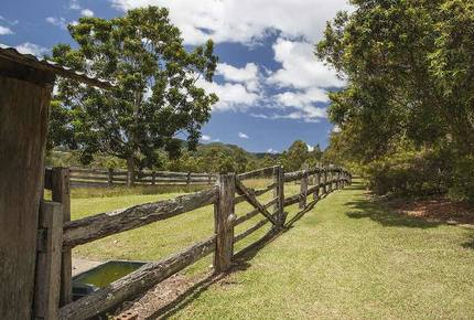Orara Valley Estate - Upper Orara, Australia