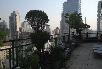New York City Terraced View - New York City, New York
