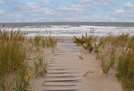 Spectacular Oceanfront With Rare Private Path To Beach - Beach Haven, New Jersey
