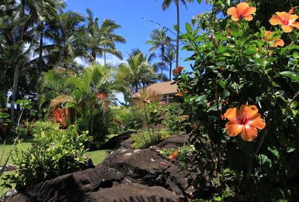 North Shore Oahu Beach House - Haleiwa, Hawaii