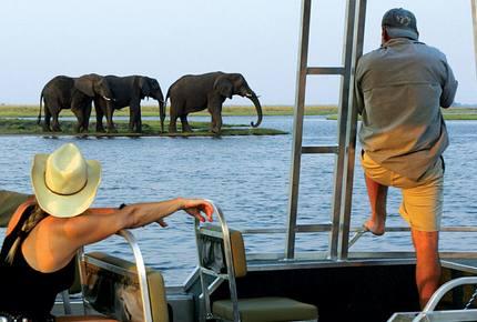 A Master Suite on The Zambezi Queen - Botswana, Botswana
