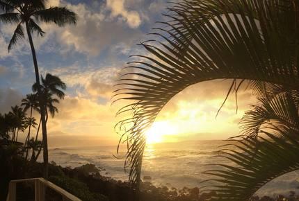 Waimea Bay Oceanfront